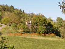 Santa Sofia (FC) adiacenze vendesi ampio podere con casa colonica posizione collinare. in Vendita